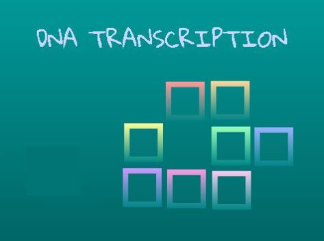 This SCRATCH project automatically converts DNA strand sequences into mRNA strand sequences.