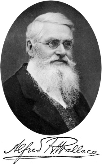 alfred_russel_wallace_-_project_gutenberg_etext_14558