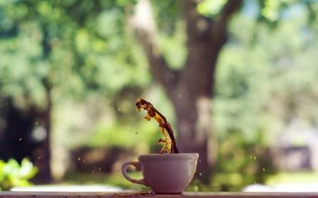 Moosmosis: Cup of Creativity
