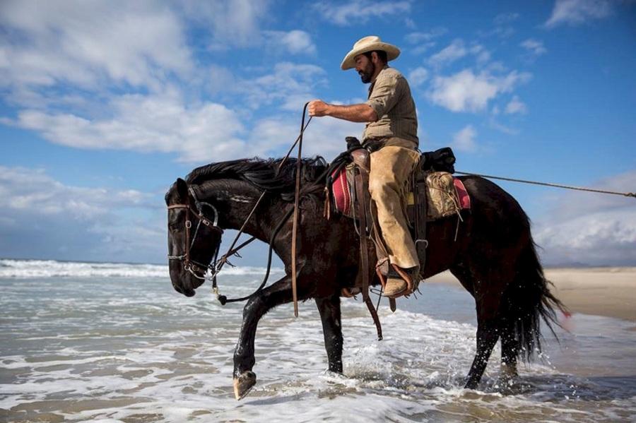 cowboy-horse-riding-water