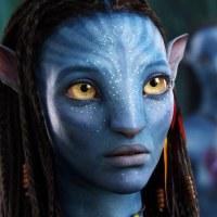 Avatar Movie Review Essay: Hero's Journey in Avatar by James Cameron