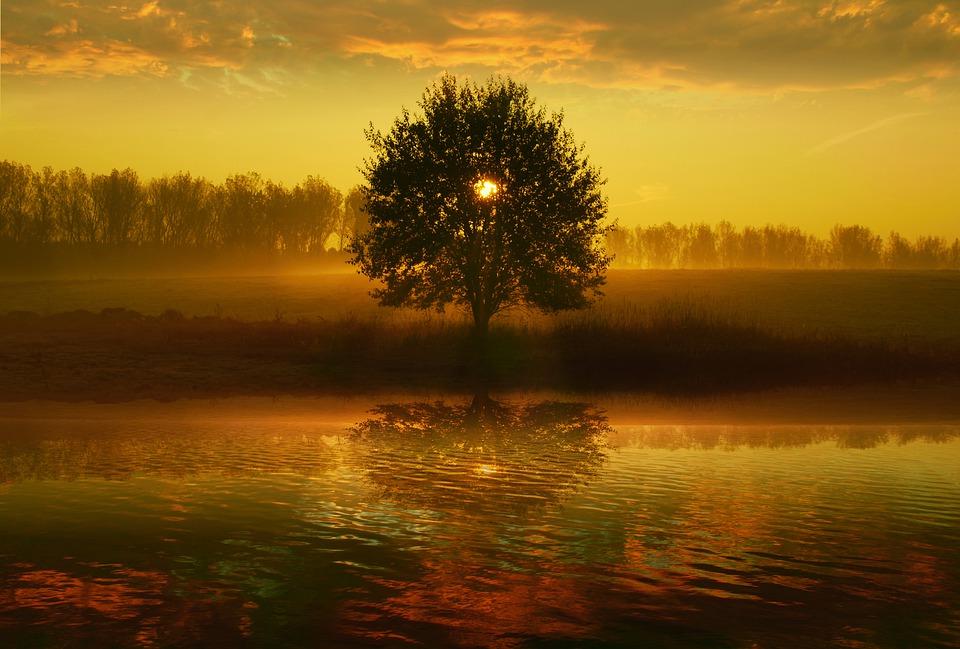sunrise-4436468_960_720